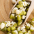 Sprouted mung beans stock photo © joannawnuk