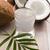 Coconut and coconut water stock photo © joannawnuk