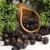 plant · bessen · achtergrond · groene · geneeskunde · bladeren - stockfoto © joannawnuk