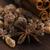корицей · тростник · коричневого · сахара · древесины · фон - Сток-фото © joannawnuk