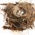 detail of bird eggs in nest stock photo © joannawnuk