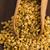arı · polen · çiçek · gıda · tıbbi - stok fotoğraf © joannawnuk