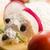 eğlence · gıda · çocuklar · fare · peynir · arka · plan - stok fotoğraf © joannawnuk