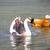 カモ · 女性 · 湖岸 · 緑 · 湖 - ストックフォト © johnkasawa