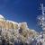 壁 · 氷 · 森林 · 岩 · 詳細 · 草 - ストックフォト © johny007pan