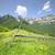 горные · пейзаж · забор · панорамный · гор - Сток-фото © johny007pan