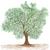 árbol · ilustración · enorme · aislado · primavera · paisaje - foto stock © jomaplaon