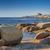 башни · Корсика · Средиземное · море · пород · регион · пляж - Сток-фото © joningall
