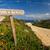 legno · segno · spiaggia · punta - foto d'archivio © joningall