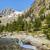 Restonica Valley in Corsica stock photo © Joningall