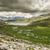 コルシカ島 · 山 · 表示 · ストリーム · 緑 · フォアグラウンド - ストックフォト © joningall