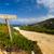 mavi · tabelasını · plaj · dekoratif · ahşap · deniz - stok fotoğraf © joningall