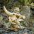 череп · тропе · Корсика · центральный - Сток-фото © Joningall