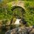 genoese bridge and cascade near feliceto in corsica stock photo © joningall