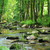 vízesés · kicsi · sűrű · trópusi · esőerdő · természet - stock fotó © jonnysek