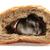 hamster · gıda · fotoğraf · karışık · kemirgen - stok fotoğraf © jonnysek
