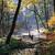 autumn park in fog stock photo © jonnysek