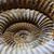 kövület · szép · természetes · földtan · textúra · csiga - stock fotó © jonnysek