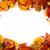 ősz · liget · csodálatos · őszi · arany · levelek - stock fotó © jonnysek