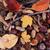 chêne · branche · gland · écrou · belle · saison · d'automne - photo stock © jonnysek
