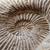 抽象的な · 化石 · いい · 背景 · シェル · パターン - ストックフォト © jonnysek