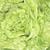 groen · blad · cel · structuur · macro · textuur · shot - stockfoto © jonnysek