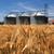 farm wheat field with grain silos for agriculture stock photo © joruba