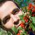 groselha · monte · ramo · verão · dia · folha - foto stock © joseph73