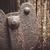 öreg · klasszikus · lakat · fából · készült · fa · háttér - stock fotó © juhku