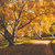 camino · otono · forestales · anochecer · líder - foto stock © juhku