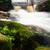 küçük · dere · çalışma · çimenli · alan · yaz - stok fotoğraf © juhku