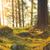 природного · пород · мох · старые · свежие · зеленый - Сток-фото © juhku
