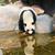 panda · fa · erdő · utazás · fekete · bambusz - stock fotó © juhku