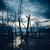 morto · árvores · praia · baixo · maré · parque - foto stock © juhku