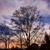 notte · panorama · nuvoloso · luna · cielo - foto d'archivio © juhku