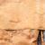 havlama · doku · ağaç · orman · çapraz · sanayi - stok fotoğraf © juhku