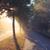 ヴィンテージ · 太陽 · 日光 · 古い · グランジ · 紙 - ストックフォト © juhku