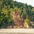 lush jungle and big cliff near sand beach stock photo © juhku