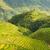 rizs · terasz · tájkép · Kína · égbolt · fű - stock fotó © juhku