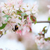 bumblebee on apple tree flower stock photo © juhku