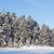 congelada · lago · neve · coberto · floresta · ensolarado - foto stock © juhku