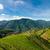 コメ · 風景 · 中国 · 食品 · 自然 · 背景 - ストックフォト © juhku