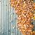 осень · Top · человека · лестниц · вниз · бизнесмен - Сток-фото © juhku