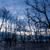 morto · árvores · lamacento · praia · pôr · do · sol · baixo - foto stock © juhku