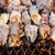 pork meat grilled in open fire stock photo © juhku