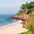 plaj · Hindistan · güney · gökyüzü · ağaç - stok fotoğraf © juhku