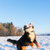 preto · cão · saltando · alegria · campo - foto stock © juhku