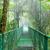 吊り橋 · 森林 · グルジア · 木材 · 建設 · 風景 - ストックフォト © juhku