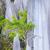 taş · uçurum · Rainforest · bereketli · doğa · kaya - stok fotoğraf © juhku