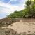 strand · bomen · Costa · Rica · water · zee · achtergrond - stockfoto © juhku